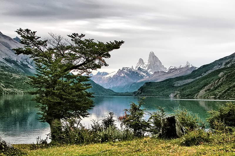 mt fitz roy, patagonia, pictures of patagonia, pictures of argentina