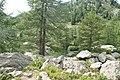 Lago d'Arpy - panoramio (12).jpg