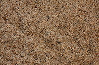 Lake Michigan sand.jpg