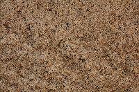 Lake Michigan sand.jpg