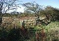 Lambwath, Withernwick - geograph.org.uk - 602921.jpg