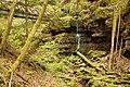 Landschaftsschutzgebiet Nagoldtal (8 Teilgebiete), Kennung 2.35.037, Lützengraben, Wildberg 10.jpg