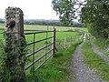 Lane at Mullaghanny - geograph.org.uk - 993756.jpg