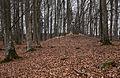Langenenslingen-5659.jpg