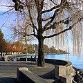 Lausanne - panoramio (165).jpg