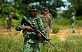 Lava Dogs team up with Royal Bruneian Landing Force.jpg