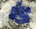 Lazurite in pyritic marble (Sakhi Formation, Neoarchean; Sar-e-Sang Deposit, Kokcha Valley, Hindu Kush Mountains, Afghanistan) (29807269083).jpg