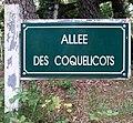 Le Touquet-Paris-Plage 2019 - Allée des Coquelicots.jpg