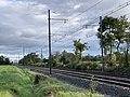 Ligne ferroviaire Mâcon Ambérieu Route Prales Perrex 5.jpg