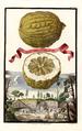 Limon della Costa grosso Volkamer 1708 132a.png