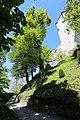 Linde unterhalb des Schloss Friedberg 01.JPG