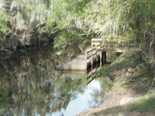 Lithia Springs, Florida canoe launch January 4, 2015