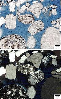 Lithic sandstone