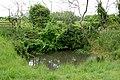 Livestock drinking pond west of Gayton - geograph.org.uk - 1322696.jpg