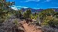 Llama Trail (39316137834).jpg