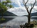 Loch Lomond - geograph.org.uk - 1074938.jpg