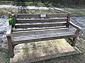 Long shot of the bench (OpenBenches 4293-1).jpg