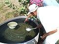 Looking for Dengue Vector Breeding Sites - Yemen (17054568642).jpg