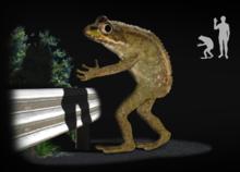 Loveland frog.png