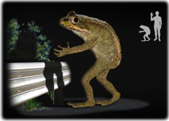 Loveland frog - An artist's depiction of the supposed creature.