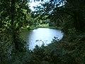 Lower Pond - August 2011 - panoramio.jpg
