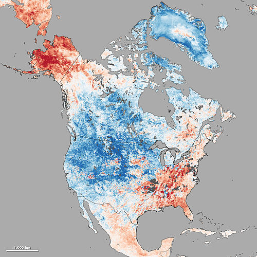 Cold wave in continental North America from Dec-03 to Dec-10, 2013. Red color means above mean temperature; blue represents below normal temperature. Lst neo 20131203-20131210.jpg