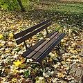 Lublin-bench-181105-1.jpg