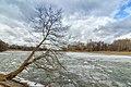 Lyublino pond spring.jpg