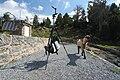 Méchante Chèvre Lac Aubert BLS.JPG