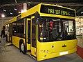 MAZ 107 in Kielce - Transexpo 2008.jpg