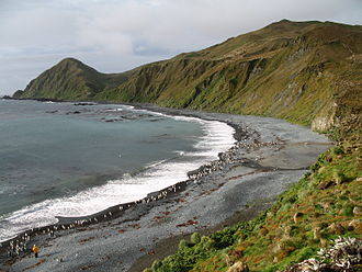 Macquarie Island - Image: Macquarie Island 7