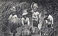 Madagascar-Tananarive-Pêcheuses dans les joncs.jpg