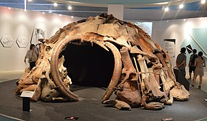 Holocene extinction - Reconstructed woolly mammoth bone hut, based on finds in Mezhyrich.