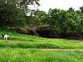 Mandapeshwar caves & Portuguese churches 36.jpg