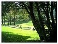 March Botanischer Garten Freiburg - Master Seasons Rhine Valley Photography - panoramio (6).jpg
