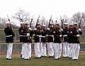 Marine Corps Silent Drill Team 4.jpg