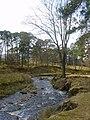 Marshaw Wyre - geograph.org.uk - 1772630.jpg