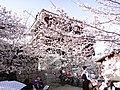 Marunouchi, Matsuyama, Ehime Prefecture 790-0008, Japan - panoramio (47).jpg