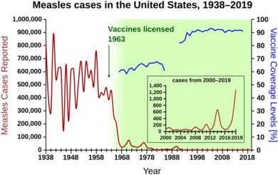 Measles cases 1938-1964 follow a highly variable epidemic pattern, with 150,000-850,000 cases per year. A sharp decline followed introduction of the vaccine in 1963, with fewer than 25,000 cases reported in 1968. Outbreaks around 1971 and 1977 gave 75,000 and 57,000 cases, respectively. Cases were stable at a few thousand per year until an outbreak of 28,000 in 1990. Cases declined from a few hundred per year in the early 1990s to a few dozen in the 2000s.