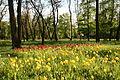 Memory Park in Belgorod 03.JPG