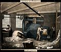 Men are working feeding raw cotton into machines. Coloured l Wellcome V0039847.jpg