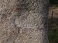 Menhir dels Palaus (Agullana) - 12.jpg