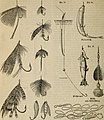 Meyers Konversations-Lexikon - eine Encyklopädie des allgemeinen Wissens (1890) (14776965724).jpg