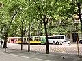 Milano (Ank kumar, Infosys Limited) 09.jpg