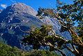 Milford Sheerdown Peak.jpg