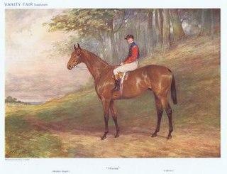 Minoru (horse) Irish-bred Thoroughbred racehorse