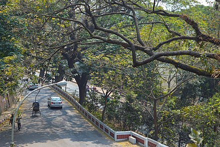 Mohammad Yusuf Chowdhury Road in the Tigerpass area, an example of the city's hilly landscape Mohammad Yusuf Chowdhury Road from CRB hill (03).jpg