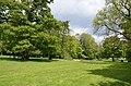 Monceau-sur-Sambre - parc - 2019-05-12 - 17.jpg