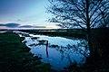 Morgon vid Åsums ängar.jpg