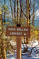 Moss Hollow Lookout (1) (8546241908).jpg